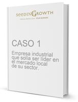 CASO 1 - Empresa industrial que solía ser líder en el mercado local de su sector